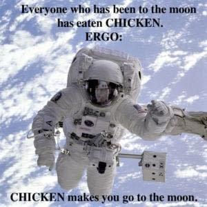chicken-astronaut