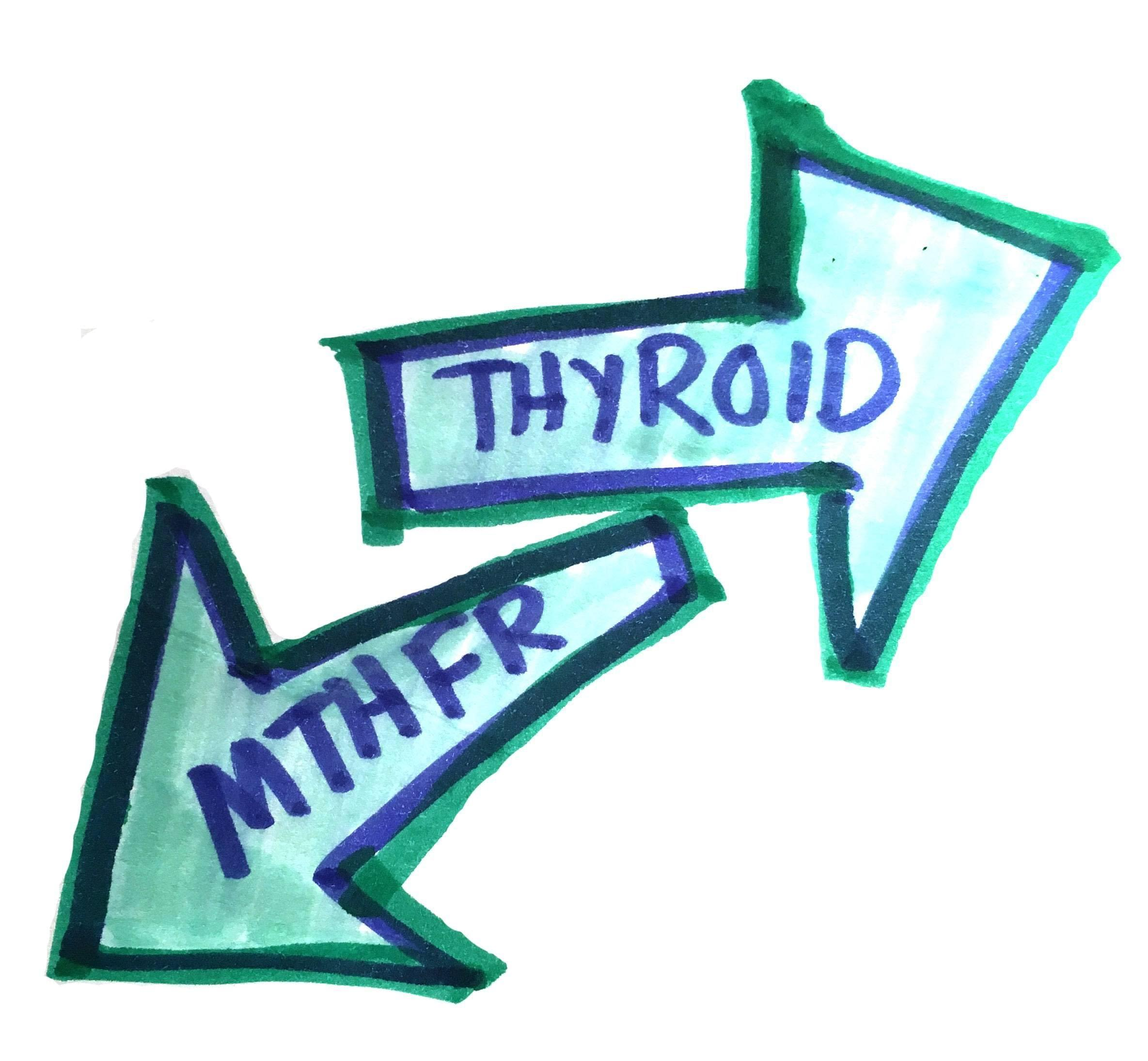 thyroid t3 and t4 levels